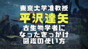 平沢達矢の画像